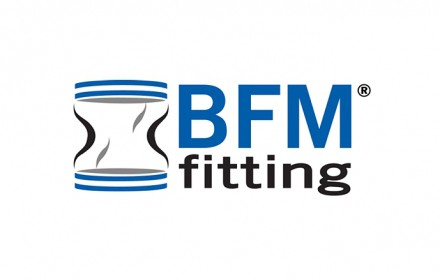 Information BFM Fitting